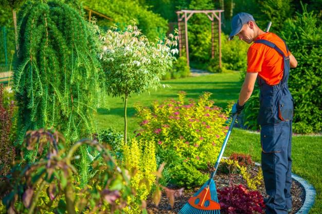 corso operatore del verde lazio corso giardiniere